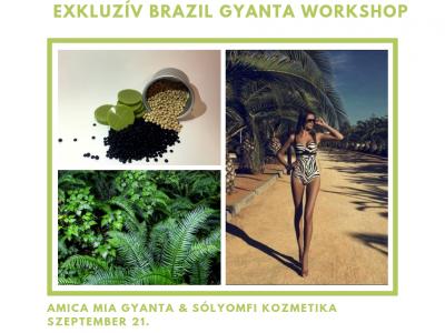 Brazil gyanta workshop